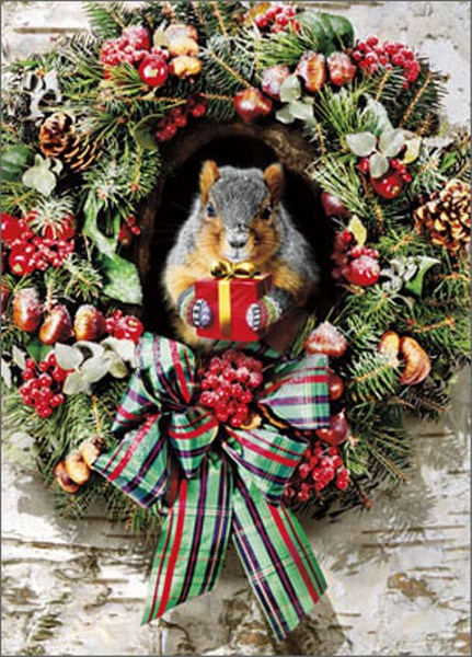 Squirrel With Gift Stand Out (1 card/1 envelope) Avanti Pop Up Christmas Card  INSIDE: Merry Christmas �from the nuthouse!