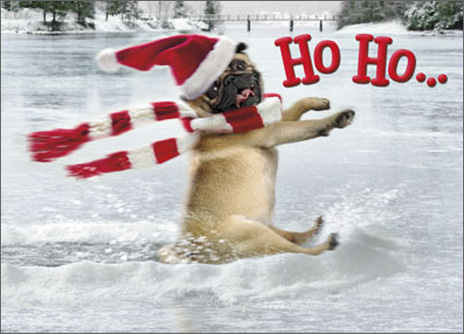 Dog Slides Across Frozen Pond Stand Out (1 card/1 envelope) Avanti Pop Up Pug Christmas Card - FRONT: Ho Ho�  INSIDE: Whoa! Merry Christmas