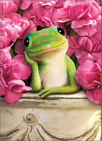 Gecko In Bucket With Flowers (1 card/1 envelope) Avanti Stand Out Pop Up Valentine's Day Card  INSIDE: Just thinking of you makes me smile! Happy Valentine's Day