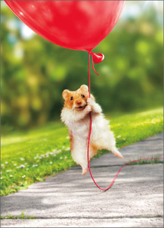 Hamster Heart Balloon (1 card/1 envelope) Avanti Stand Out Pop Up Valentine's Day Card  INSIDE: I (heart) you! Happy Valentine's Day