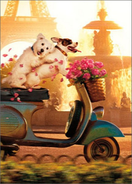 Dog Couple On Scooter (1 card/1 envelope) Avanti Funny Valentine's Day Card  INSIDE: You make my heart go Vrooom! Happy Valentine's Day