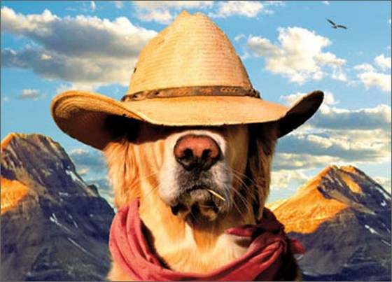 Dog With Straw Hat (1 card/1 envelope) - Father's Day Card  INSIDE: HERO, LEGEND, BEST DAD EVER! HAPPY FATHER'S DAY