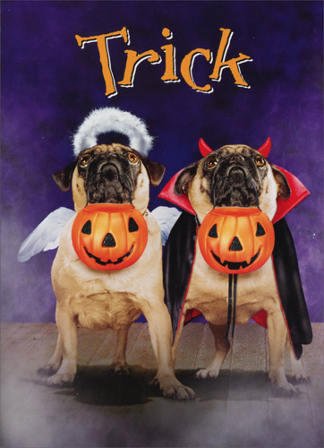 Two Pugs In Costumes (1 card/1 envelope) Avanti Stand Out Pop Up Funny Dog Halloween Card - FRONT: Trick  INSIDE: or Treats? Happy Holloween