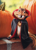 Chipmunk Vampire (1 card/1 envelope) - Halloween Card  INSIDE: Happy Halloween - Who vants candy?!