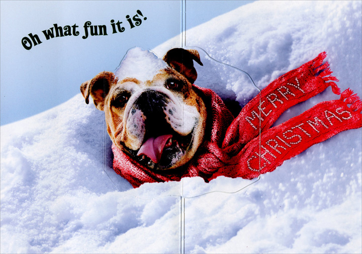 Dog Stuck In Snow Bank Stand Out Pop-Up Funny / Humorous