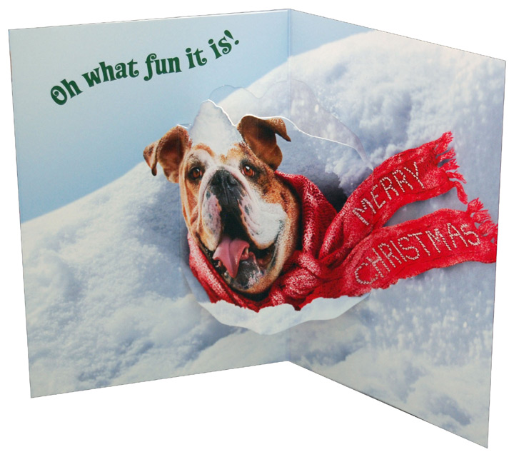Dog Stuck In Snow Bank Stand Out (1 card/1 envelope) Avanti Pop Up Funny Bulldog Christmas Card  INSIDE: Oh what fun it is! Merry Christmas