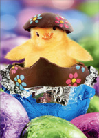 Chick In Foil Wrapped Egg (1 card/1 envelope) Avanti Easter Card