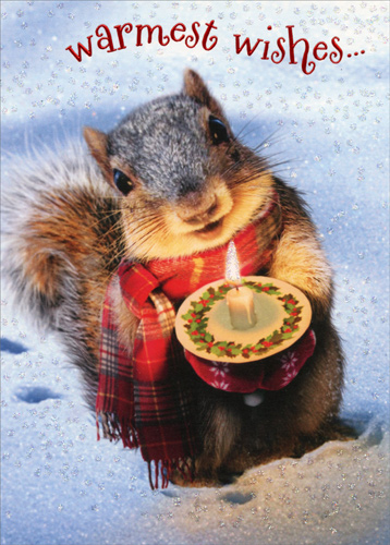 Help me pick my holiday card i am bored for Wildlife christmas cards 2016