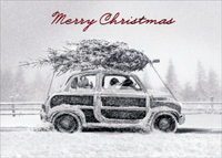 Dogs In Car With Tree (1 card/1 envelope) Avanti Embellished Christmas Card