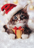 Precious Kitten With Santa Hat (1 card/1 envelope) - Christmas Card  INSIDE: May your holidays be filled with little delights! Merry Christmas