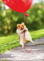 Hamster Heart Balloon (1 card/1 envelope) Avanti Valentine's Day Card
