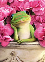 Gecko In Pot With Flowers (1 card/1 envelope) Avanti Valentine's Day Card