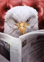 Eagle Reads Newspaper (1 card/1 envelope) Avanti Funny Father's Day Card