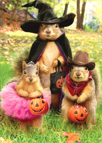 Funny Holiday Cards: Squirrel Trick Or Treaters Halloween Card By Avanti Press