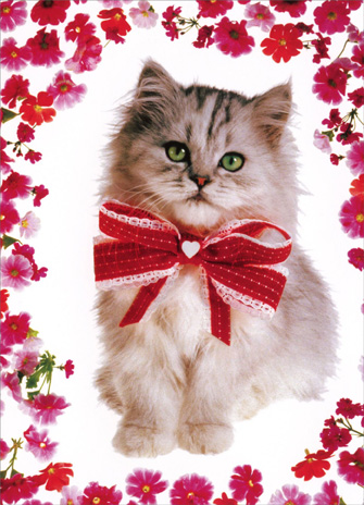 Kitten with Red Ribbon (1 card/1 envelope) Valentine's Day Card - FRONT: No Text  INSIDE: Snuggle enclosed! Happy Valentine's Day
