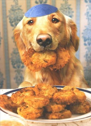 Dog Steals Latkes (10 cards & 12 envelopes) - Boxed Hanukkah Cards - FRONT: No Text  INSIDE: Hope your holiday�s golden..  and crispy, too! Happy Hanukkah.
