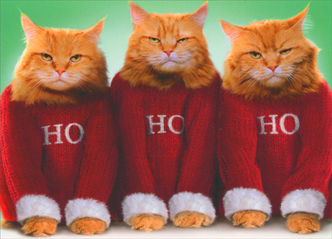 Ho Ho Ho Cats (10 cards & 12 envelopes) Avanti Boxed Christmas Cards - FRONT: Ho Ho Ho  INSIDE: Ho, Ho, Hope your holidays are happy! Merry Christmas