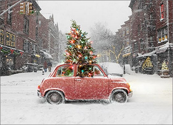 Car With Tree Through Roof (10 cards & 12 envelopes) - Boxed Christmas Cards  INSIDE: Wishing you the Best Christmas Ever!