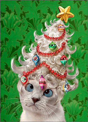 Cat In Tree Wig (1 card/1 envelope) - Christmas Card  INSIDE: A little holiday spirit goes a long way! Merry Christmas