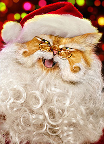 Santa Cat (1 card/1 envelope) - Christmas Card  INSIDE: Wishing you the Merriest Christmas, ever!