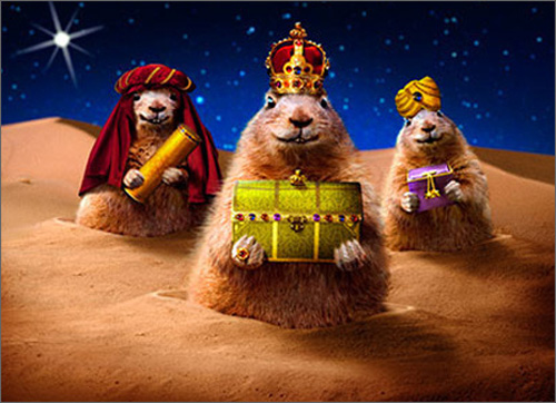 Prairie Dog Wiseman (10 cards & 12 envelopes) - Boxed Christmas Cards  INSIDE: Peace on Earth, good will to all! Merry Christmas