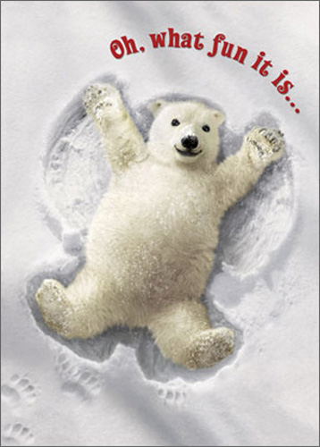 Polar Bear Snow Angel (10 cards/12 envelopes) Avanti Funny Boxed Christmas Cards - FRONT: Oh, what fun it is�  INSIDE: Happy Holidays!