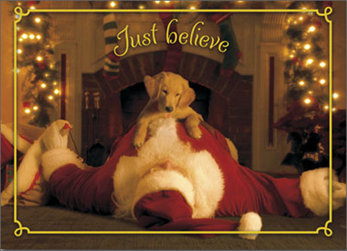 Pup Jumps On Santa (1 card/1 envelope) Avanti Funny Golden Retriever Christmas Card - FRONT: Just believe  INSIDE: Merry Christmas!