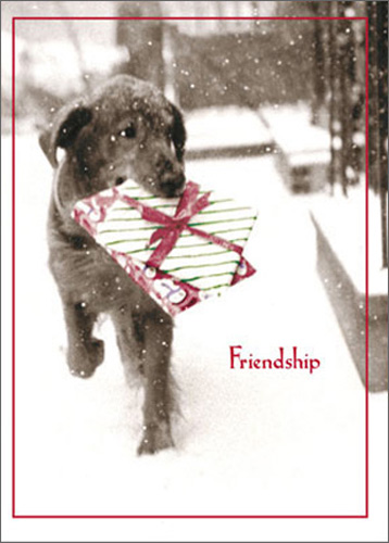 Dog Carrying Present In Snow (1 card/1 envelope) Avanti Funny Black Lab Christmas Card - FRONT: Friendship  INSIDE: �is the best gift of all! Merry Christmas