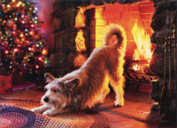 Dog Warms Butt At Fireplace (1 card/1 envelope) - Christmas Card  INSIDE: Warmest wishes for a very Merry Christmas!