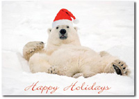 Polar Bear with Santa Hat Lounging (25 cards & envelopes) Personalized Funny Boxed Holiday Cards