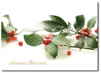 Frosted Berries (25 cards & envelopes) Personalized Boxed Holiday Cards