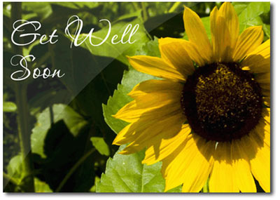 Get Well Sunflower (25 cards & envelopes) Personalized Business Boxed Get Well Cards