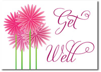 Get Well Fun Flowers (25 cards & envelopes) - Boxed Get Well Cards