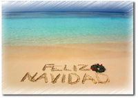 Feliz Navidad (25 cards & envelopes) - Boxed Holiday Cards