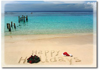 Happy Tropical Holidays (25 cards & envelopes) - Boxed Holiday Cards