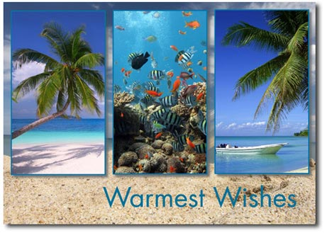 Tropical Paradise Trio (25 cards & envelopes) Personalized Tropical Boxed Holiday Cards