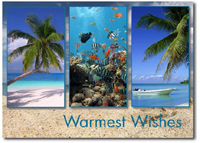 Tropical Paradise Trio (25 cards & envelopes) - Boxed Holiday Cards