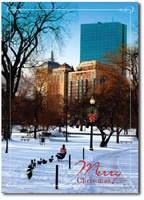 Duck Crossing (25 cards & envelopes) Personalized Boston Massachusetts Boxed Christmas Cards