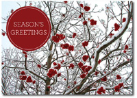 Lush Berries (25 cards & envelopes) Personalized Boxed Holiday Cards