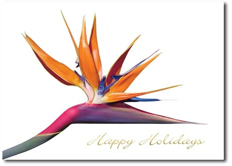 Bird of Paradise (25 cards & envelopes) Personalized Boxed Holiday Cards