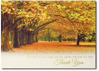 Fall Tree Lane (25 cards & envelopes) - Boxed Thanksgiving Cards