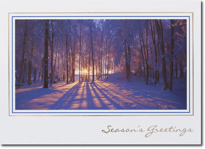 Winter Woods (25 cards & envelopes) - Boxed Holiday Cards