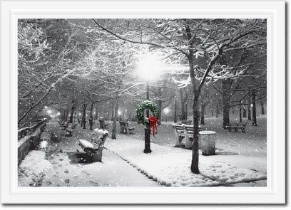 Winter Park (25 cards & envelopes) Personalized Boxed Holiday Cards