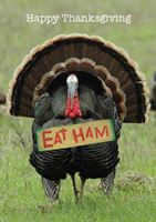 Eat Ham! (25 cards & envelopes) - Boxed Thanksgiving Cards