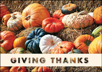 Gourds Giving Thanks (25 cards & envelopes) - Boxed Thanksgiving Cards
