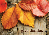 Give Thanks (25 cards & envelopes) - Boxed Thanksgiving Cards