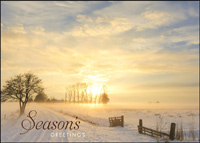 Golden Sunset (25 cards & envelopes) - Boxed Holiday Cards