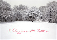 White Christmas (25 cards & envelopes) - Boxed Holiday Cards