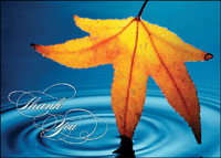 Reflecting Leaf (25 cards & envelopes) Custom Imprint Business Boxed Thanksgiving Cards