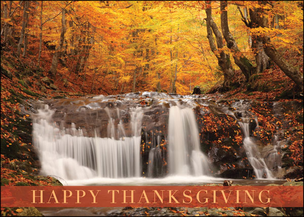 woodland waterfall box of 25 custom imprint thanksgiving cards by